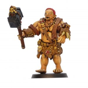 Ogre warrior D1 painted example from Mystic Pigeon Gaming